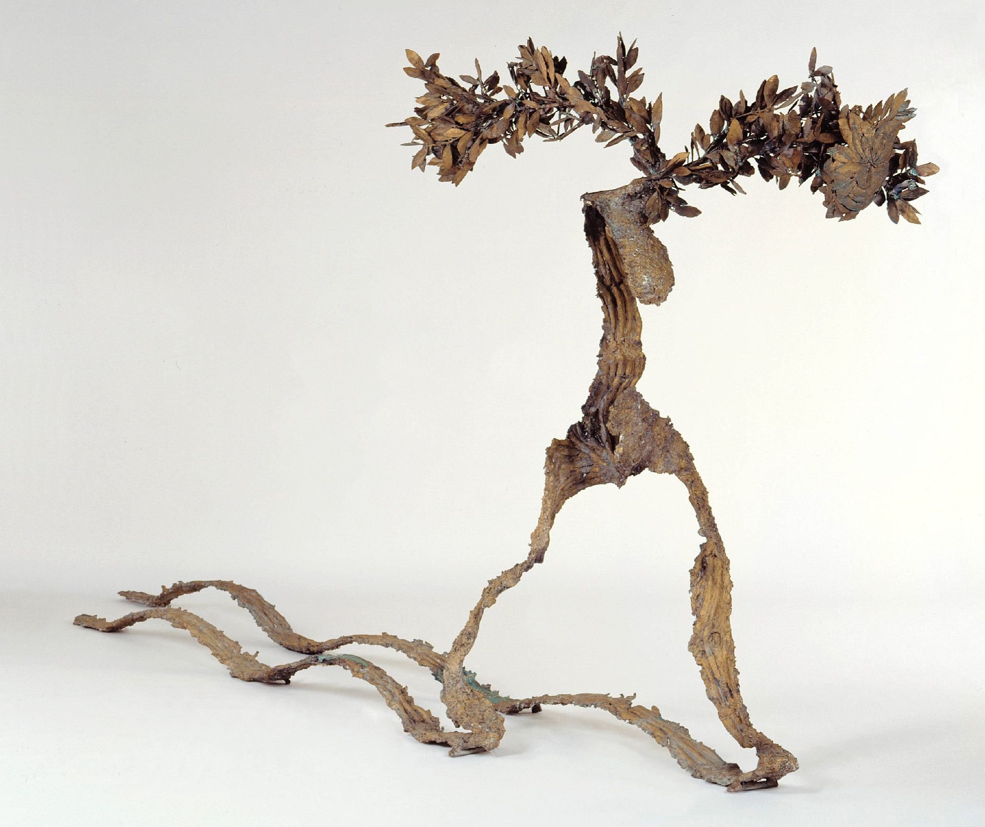 Giuseppe Penone, Path, 1983, bronze, single cast, 180 x 400 x 45 cm. Purchase, Horsley and Annie Townsend Bequest.
