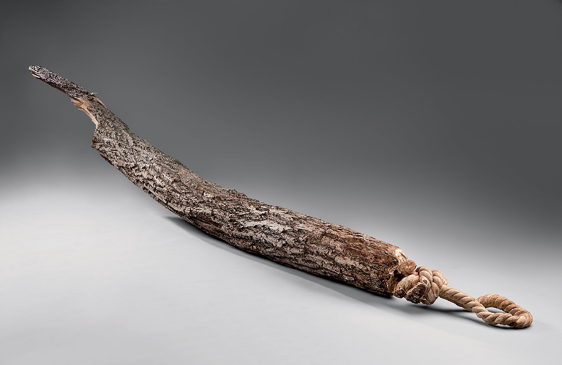 Maskull Lasserre (born in 1978), Bough, 2012, carved butternut tree bough, 320 x 28 x 28 cm. MMFA, purchase, the Canada Council for the Arts' Acquisition Assistance Program and Dr. Gurjinder P. Sall Fund. Photo MMFA, Christine Guest