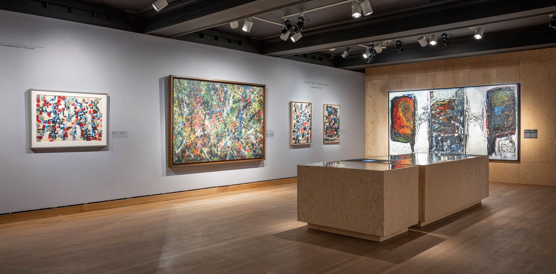 View of the exhibition Riopelle: The Call of Northern Landscapes and Indigenous Cultures. Photo MMFA, Denis Farley
